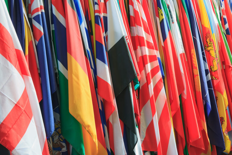 foreign voices flags